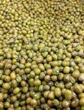 Mung beans Royalty Free Stock Photos