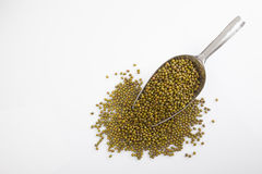 Mung beans with transfer scoop Royalty Free Stock Photo