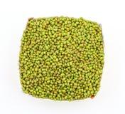 Mung Beans  Vigna aconitifolia Royalty Free Stock Photography