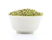 Mung Beans  Vigna aconitifolia Stock Photos