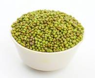 Mung Beans  Vigna aconitifolia Stock Photo
