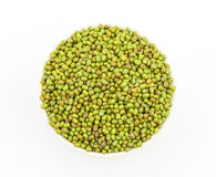 Mung Beans  Vigna aconitifolia Royalty Free Stock Photos