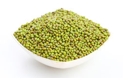 Mung Beans  Vigna aconitifolia Royalty Free Stock Photo