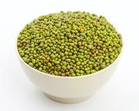 Mung Beans  Vigna aconitifolia Royalty Free Stock Image