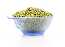 Mung Beans  Vigna aconitifolia Royalty Free Stock Photo