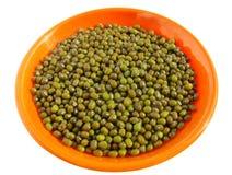 Mung beans (vigna radiata) Stock Image