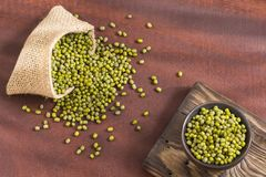 Bean Mung variety of beans in green color - Vigna radiata. Mung beans - Vigna radiata. White background royalty free stock photo