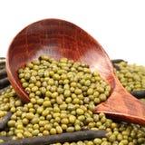 Mung beans Royalty Free Stock Photo
