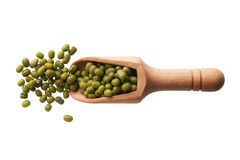 Mung beans in a wooden scoop Stock Image
