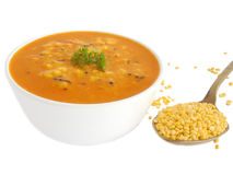 Mung Curry. In a bowl and mung beans Stock Image