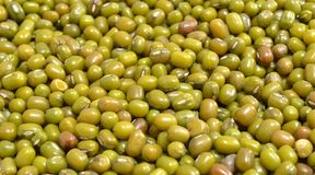 Mung or Moong Beans Stock Photos