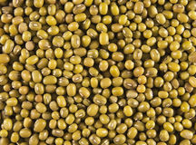 Mung or moong beans Stock Photo