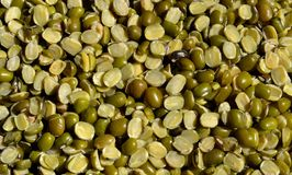 Mung/Moong Pulse or Green Gram Split. Mung/Moong Pluse (Vigna radiata) or Green Pulse. Flour of moong is used in various dishes and preparation stock images