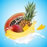 Munga l'illustrazione della spruzzata 3d con le fette di caduta di papaia, mango illustrazione di stock
