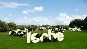 Munga la parola nel ?leche? spagnolo con struttura della pelle bovina Immagine Stock Libera da Diritti