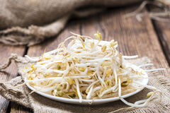 Mungbean Sprouts Stock Photos