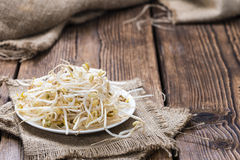 Mungbean Sprouts Royalty Free Stock Image