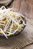 Mungbean Sprouts Stock Photography
