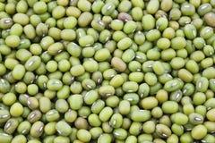 Mungo beans background Stock Image