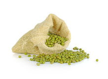 Mungo beans (Vigna radiata) in a burlap bag on a white backgroun. D Royalty Free Stock Image