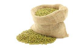 Mungo beans (Vigna radiata) in a burlap bag Royalty Free Stock Image