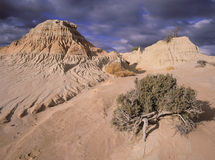 Mungo National Park  Australia. New South wales scenes Mungo National Park  Australia Royalty Free Stock Image