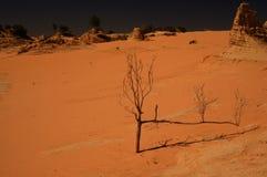Mungo National Park Royalty Free Stock Image