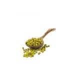 Mungobohnen über dem hölzernen Löffel lokalisiert auf Weiß Lizenzfreies Stockfoto