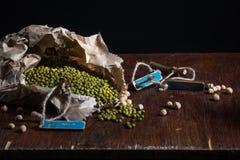 Mungobohnen Lizenzfreie Stockbilder