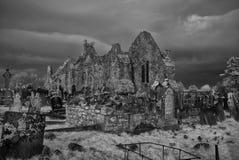 Mungret Abbey 1 Stock Image