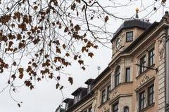 Beautiful houses and shops in Neuhauser street, Munich - Germany stock photo