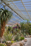 Munich, Botanical Garden greenhouse Stock Image