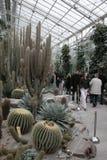 Munich botanisk trädgård Arkivbild