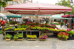 Munich Flower market. A flowers vendor in downtown Munich, Germany Royalty Free Stock Photo
