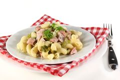 Munich ham pasta Royalty Free Stock Image