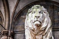 Munich lejon arkivbild