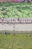 Munich maraton Arkivbild