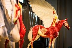 Munich porslin pegasus, mytisk varelse royaltyfri foto
