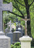 Munich south cemetery Royalty Free Stock Photography