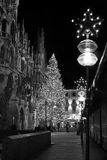 MUNICH TYSKLAND - DECEMBER 25, 2009: Julgran på natten med ljus Royaltyfri Fotografi