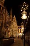 MUNICH TYSKLAND - DECEMBER 25, 2009: Julgran på nattintelligens Royaltyfria Bilder