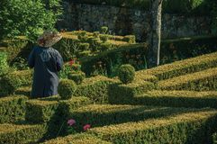 Municipal employee gardening a lush green yard. Marvao, Portugal - July 09, 2018. Municipal employee responsible for gardening a lush yard in front the Castle of stock images