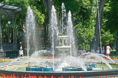 Municipal garden. Musical fountain Stock Photo