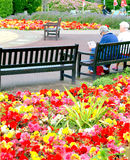 Municipal Gardens, Skegness, Lincolnshire. Royalty Free Stock Images