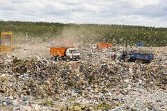 Municipal landfill for domestic waste. Trucks unload garbage at the landfill. Gulls fly over the garbage and get food from it stock images