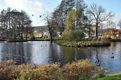 Rumia. The municipal Park in Rumia. The municipal Park in Rumia with pond, ducks and seagulls stock photography