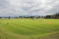 Municipal Sports Field Stock Photography