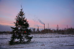 Municipal street poorly decorated Christmas tree on the edge of the industrial district of the city of St. Petersburg. City of St. Petersburg. Russia, Northern Stock Photography