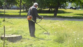 Municipal worker mows the grass in stock video footage