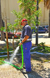 Municipal worker watering a garden city Royalty Free Stock Photo